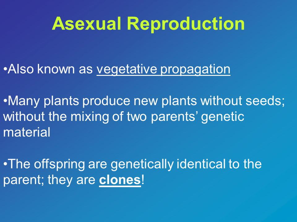 Asexual Reproduction Also known as vegetative propagation