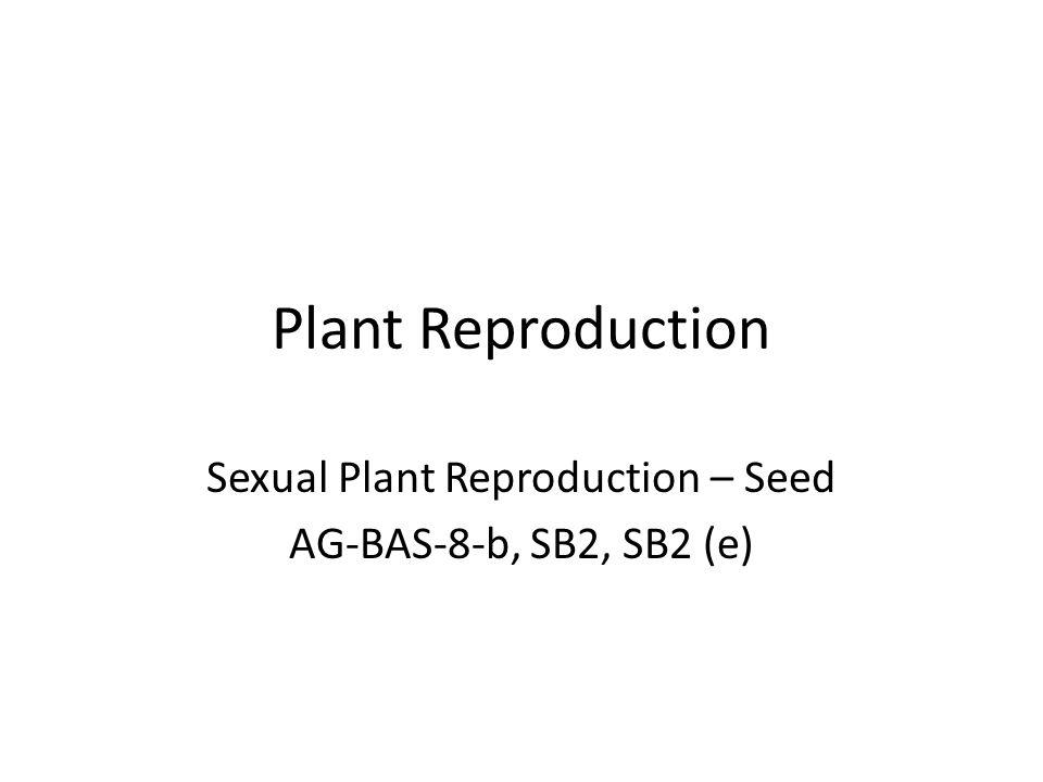 Sexual Plant Reproduction – Seed AG-BAS-8-b, SB2, SB2 (e)