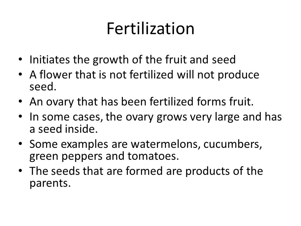 Fertilization Initiates the growth of the fruit and seed