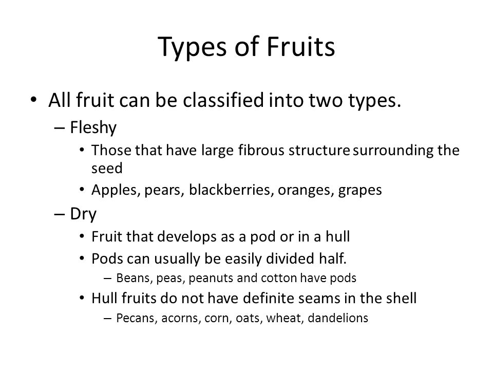 Types of Fruits All fruit can be classified into two types. Fleshy Dry