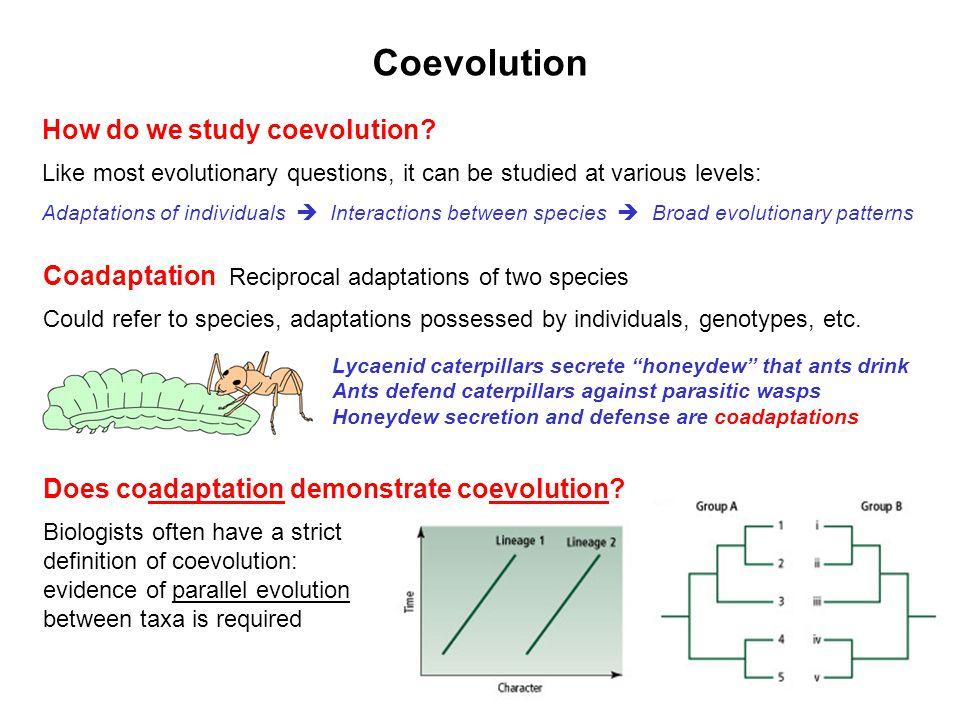 Coevolution How do we study coevolution