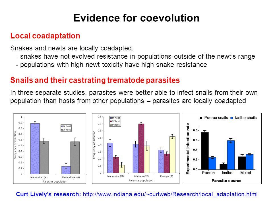 Evidence for coevolution