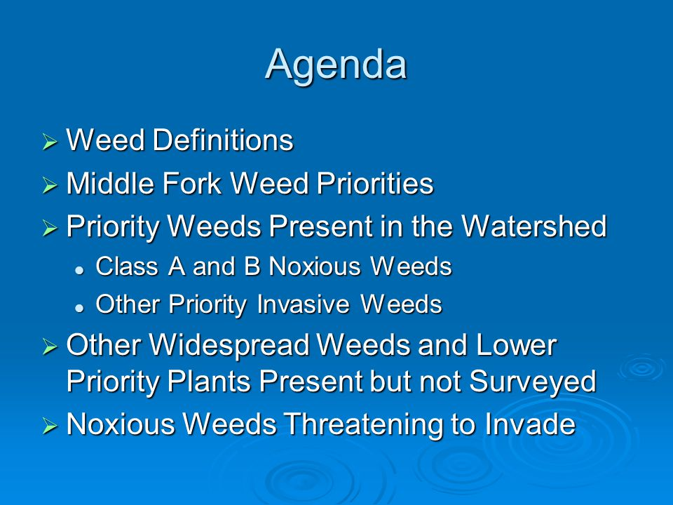 Agenda Weed Definitions Middle Fork Weed Priorities