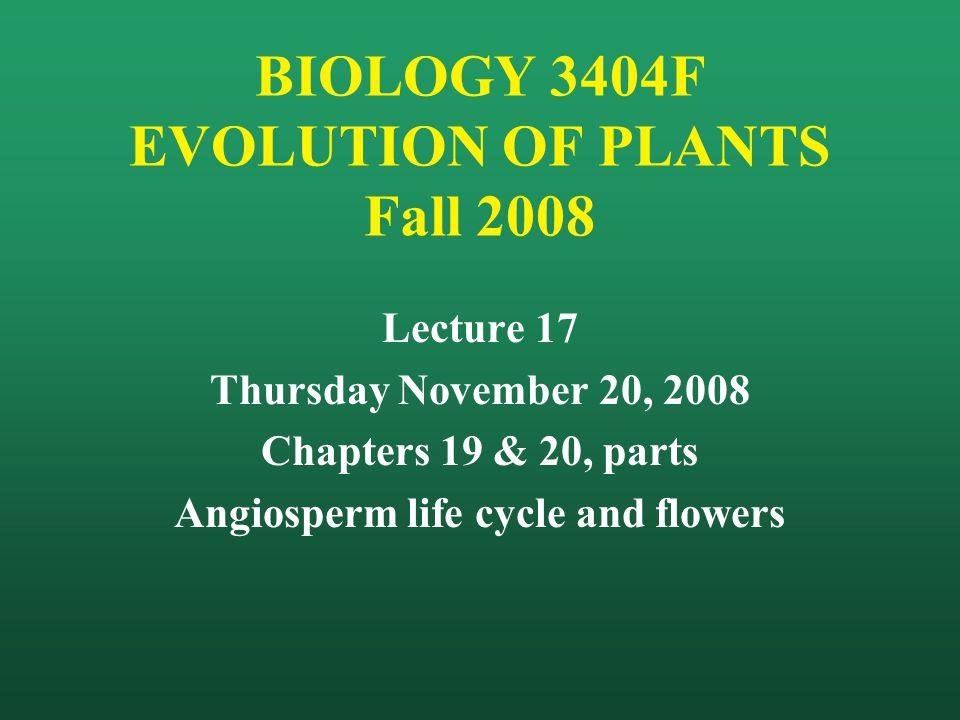 BIOLOGY 3404F EVOLUTION OF PLANTS Fall 2008