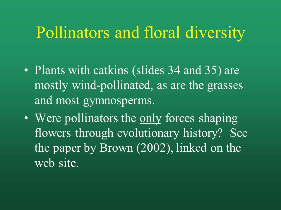 Pollinators and floral diversity