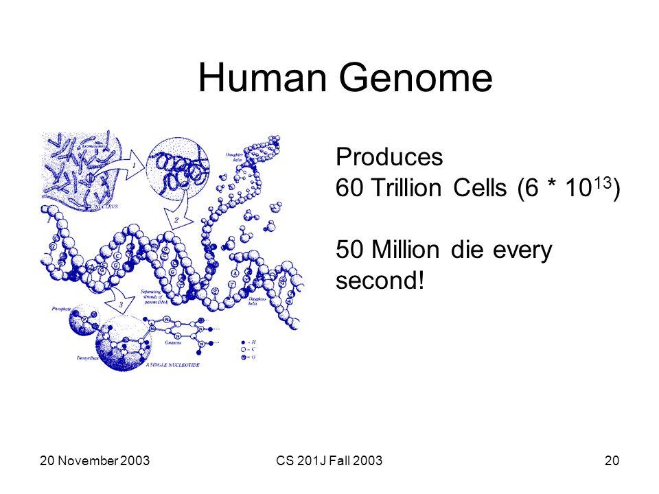 Human Genome Produces 60 Trillion Cells (6 * 1013)