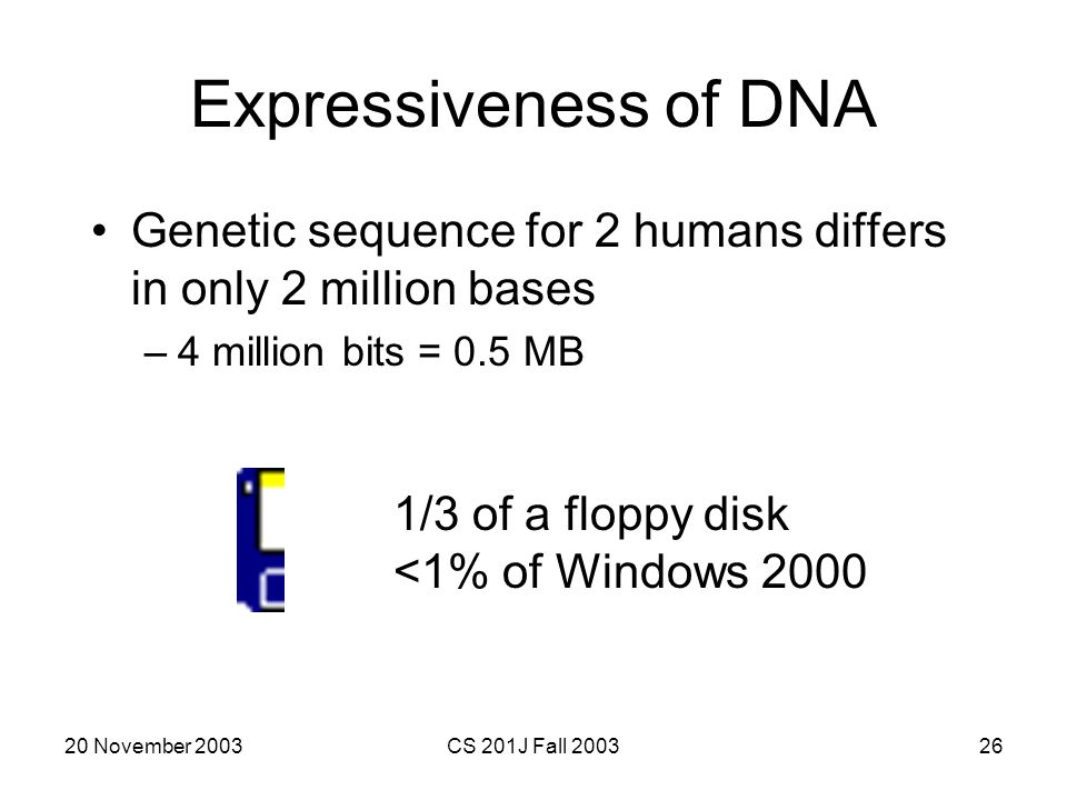 Expressiveness of DNA Genetic sequence for 2 humans differs in only 2 million bases. 4 million bits = 0.5 MB.