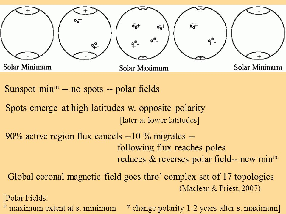Solar cycle (ii) Spots emerge at high latitudes w. opposite polarity