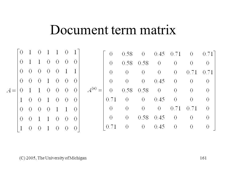 Document term matrix (C) 2005, The University of Michigan