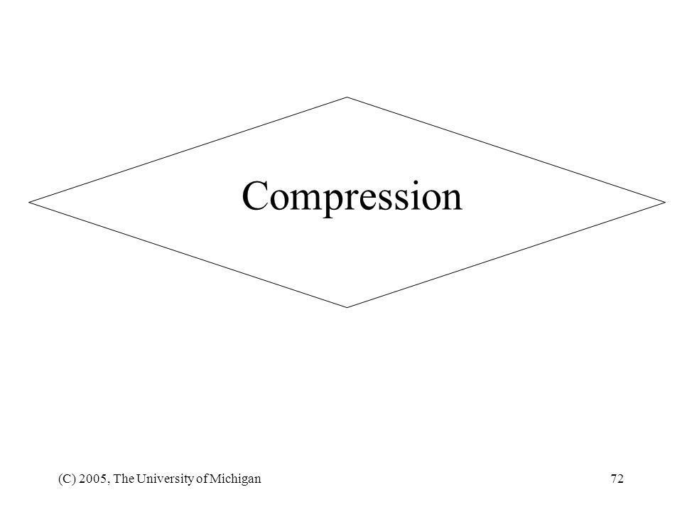 Compression (C) 2005, The University of Michigan