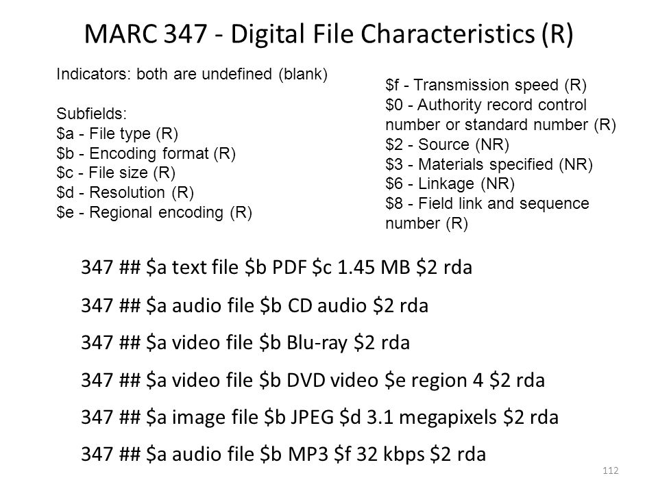 MARC 347 - Digital File Characteristics (R)