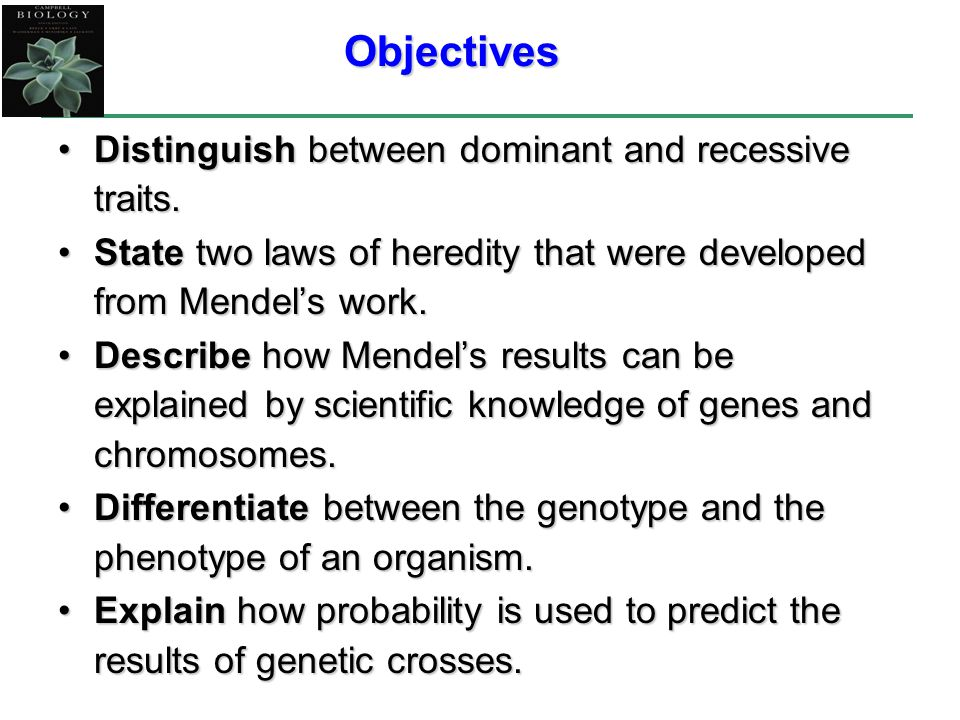 Objectives Distinguish between dominant and recessive traits.