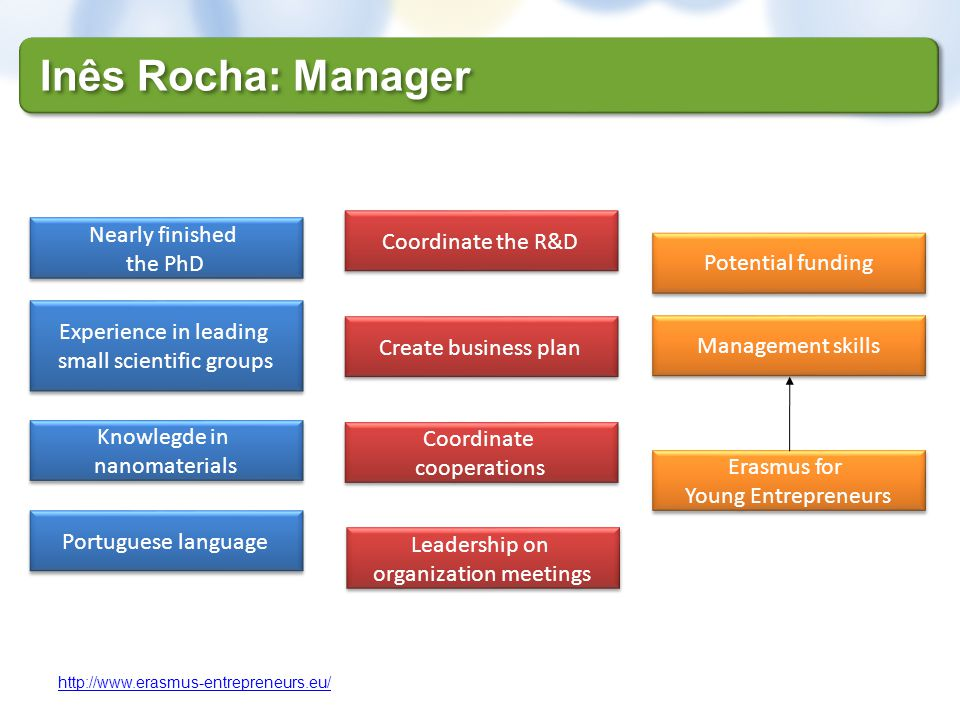 Inês Rocha: Manager Nearly finished Coordinate the R&D the PhD