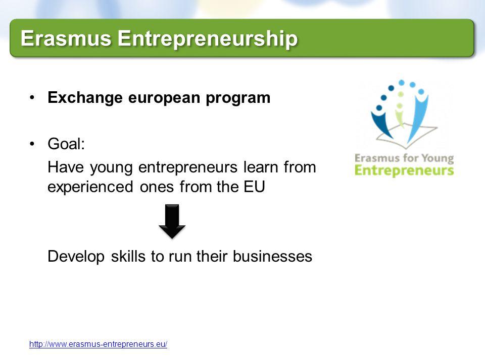 Erasmus Entrepreneurship