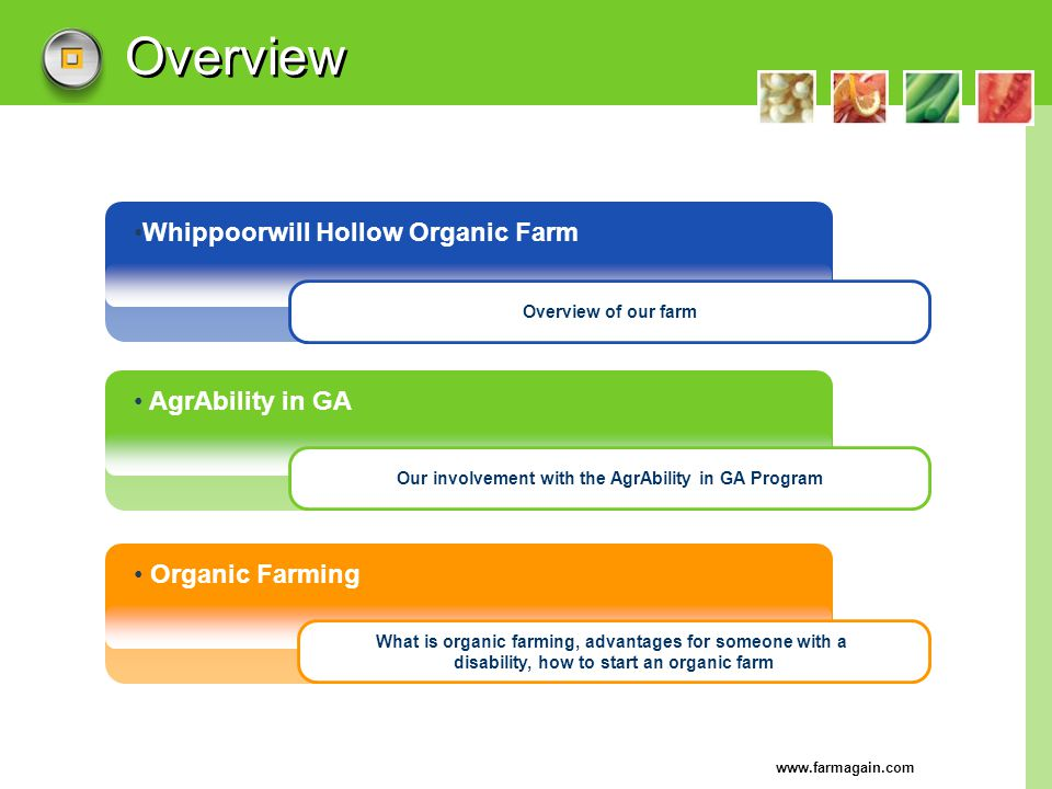 Overview Whippoorwill Hollow Organic Farm AgrAbility in GA