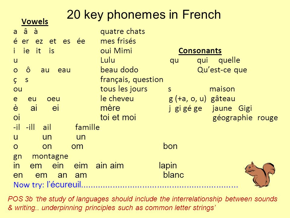 20 key phonemes in French