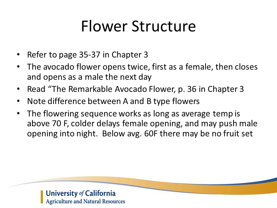 Flower Structure Refer to page 35-37 in Chapter 3