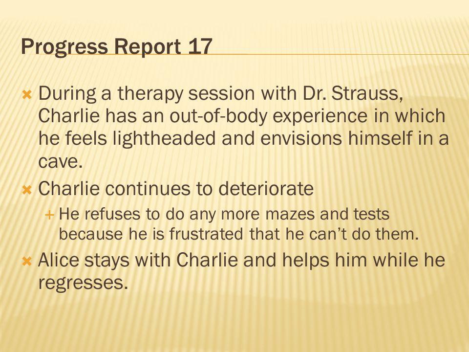 Progress Report 17