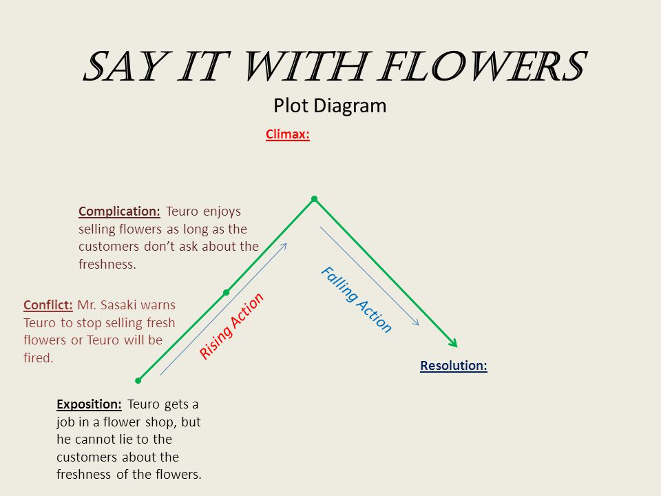 Say it with Flowers Plot Diagram