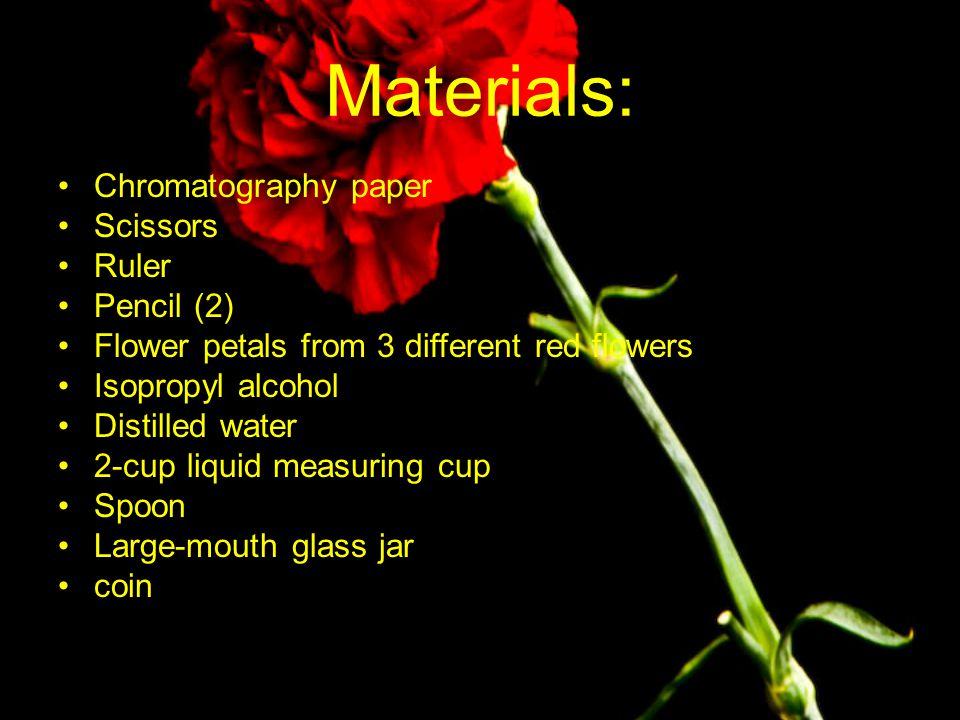 Materials: Chromatography paper Scissors Ruler Pencil (2)