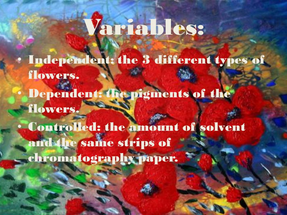 Variables: Independent: the 3 different types of flowers.