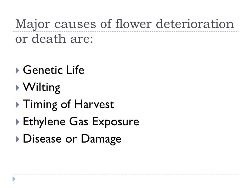 Major causes of flower deterioration or death are: