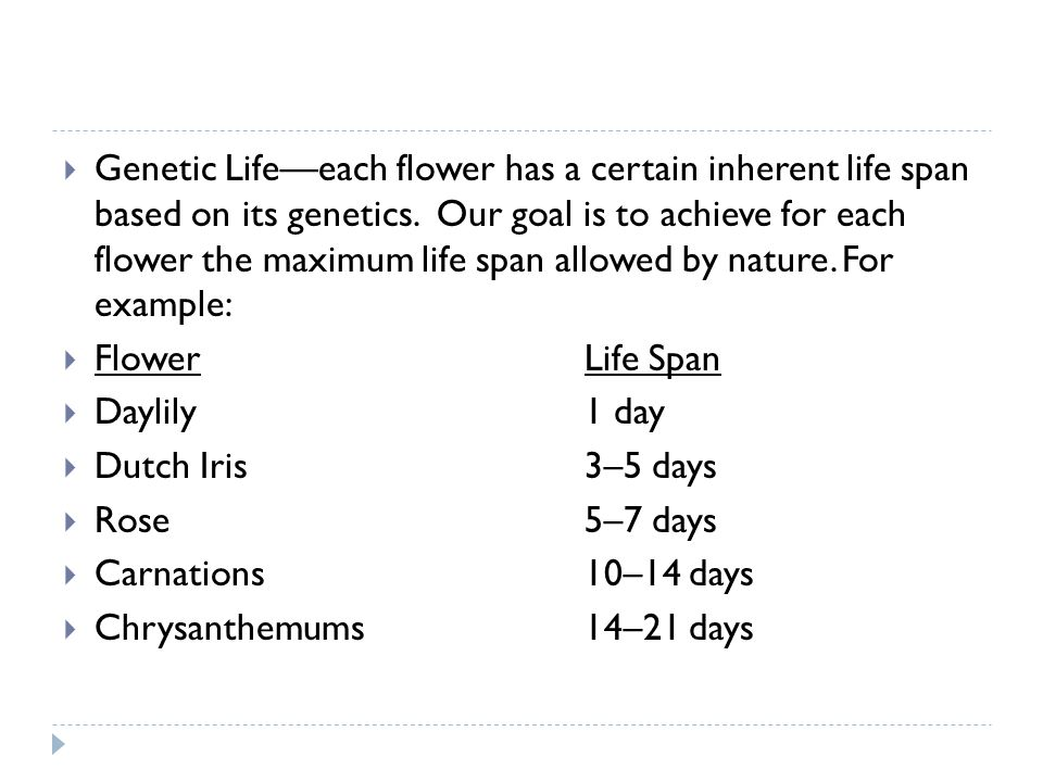 Genetic Life—each flower has a certain inherent life span based on its genetics. Our goal is to achieve for each flower the maximum life span allowed by nature. For example: