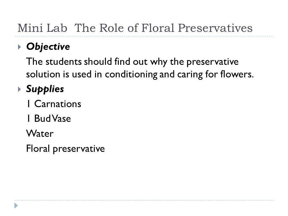 Mini Lab The Role of Floral Preservatives