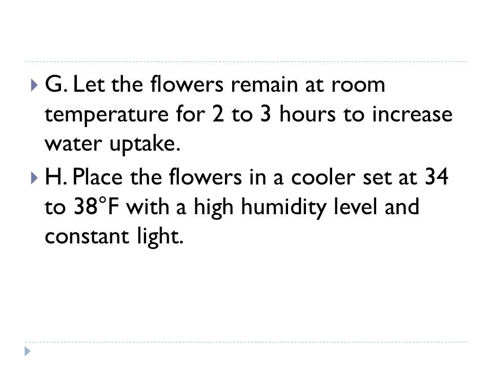 G. Let the flowers remain at room temperature for 2 to 3 hours to increase water uptake.
