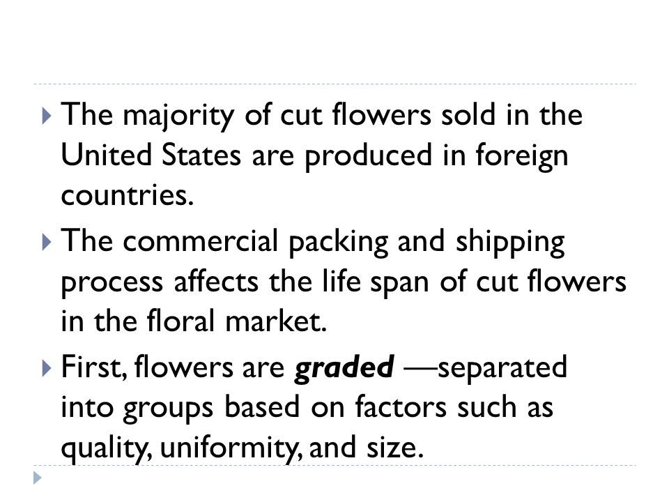 The majority of cut flowers sold in the United States are produced in foreign countries.