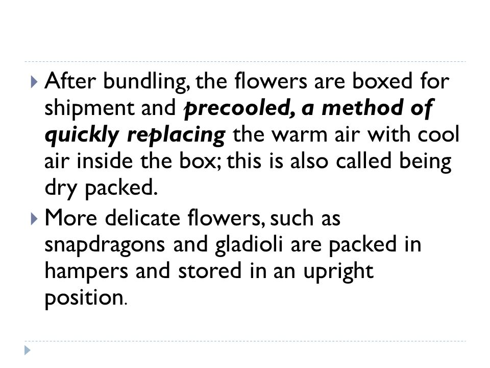 After bundling, the flowers are boxed for shipment and precooled, a method of quickly replacing the warm air with cool air inside the box; this is also called being dry packed.