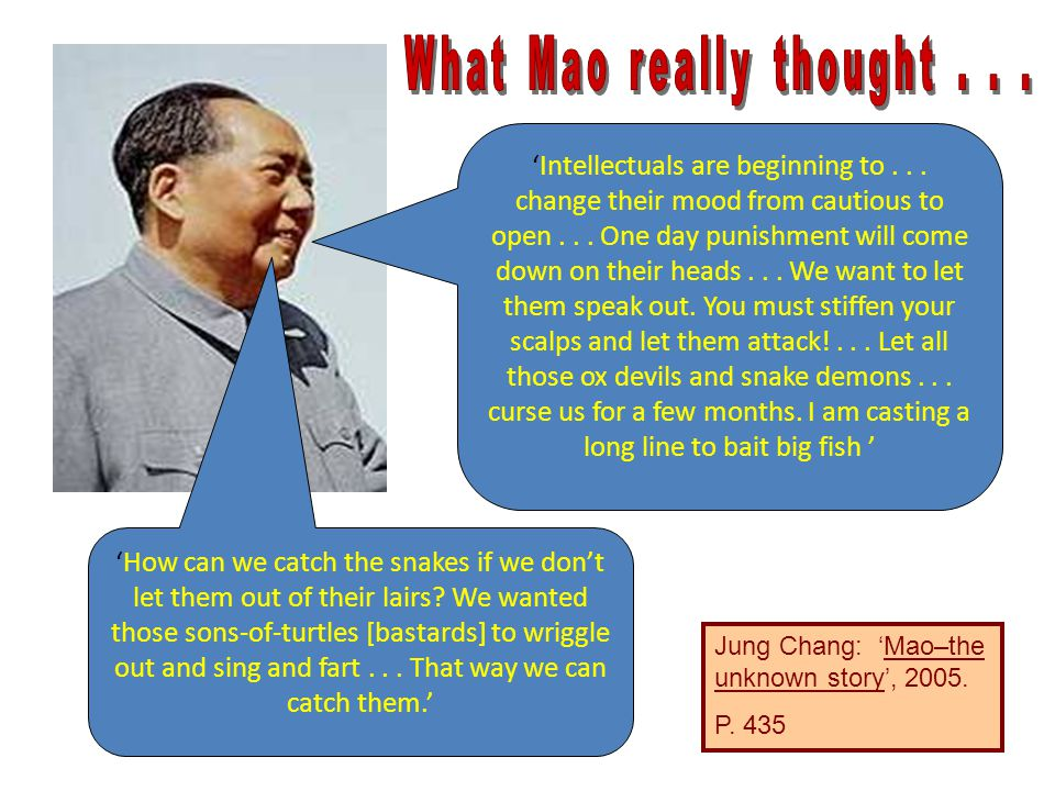 What Mao really thought . . .