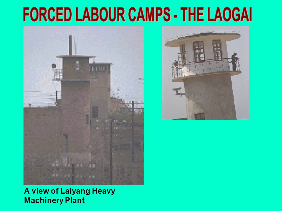 FORCED LABOUR CAMPS - THE LAOGAI