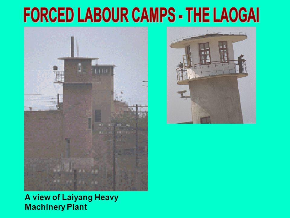 FORCED LABOUR CAMPS - THE LAOGAI