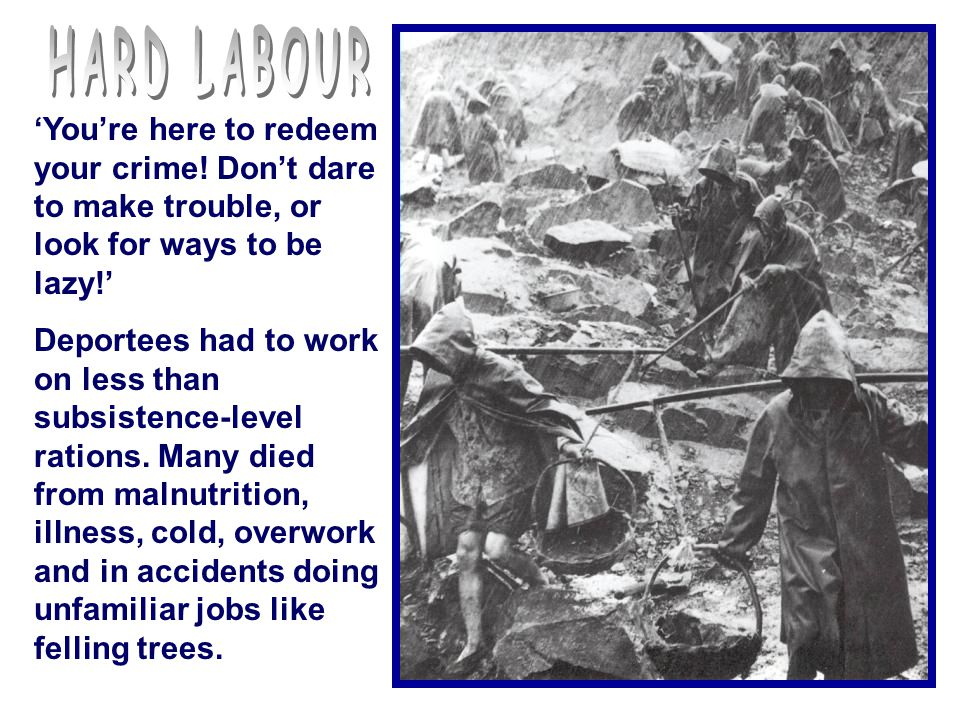 HARD LABOUR 'You're here to redeem your crime! Don't dare to make trouble, or look for ways to be lazy!'