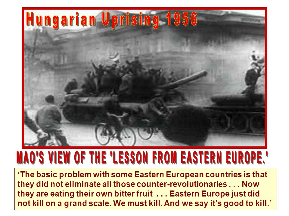 MAO S VIEW OF THE LESSON FROM EASTERN EUROPE.