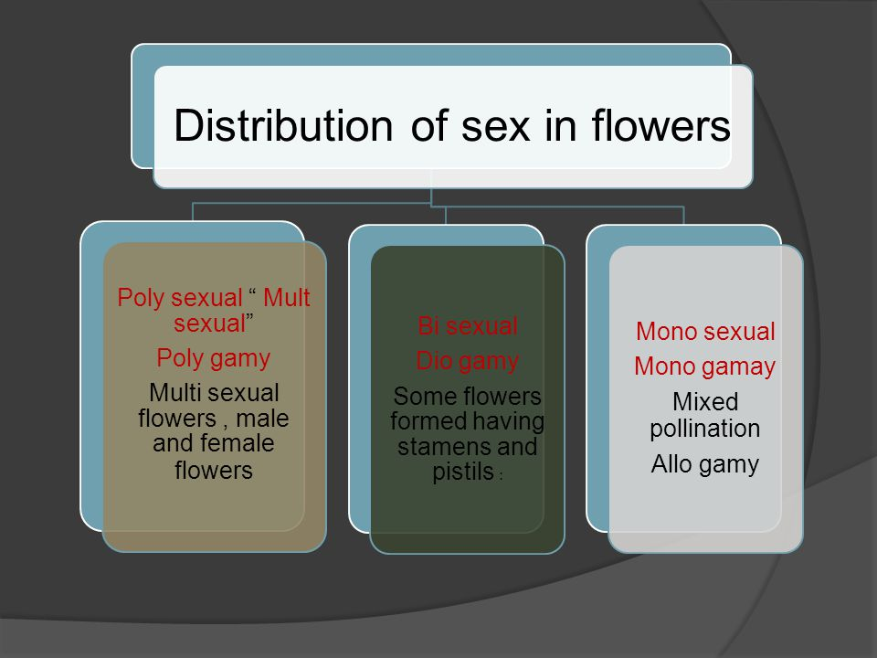 Distribution of sex in flowers