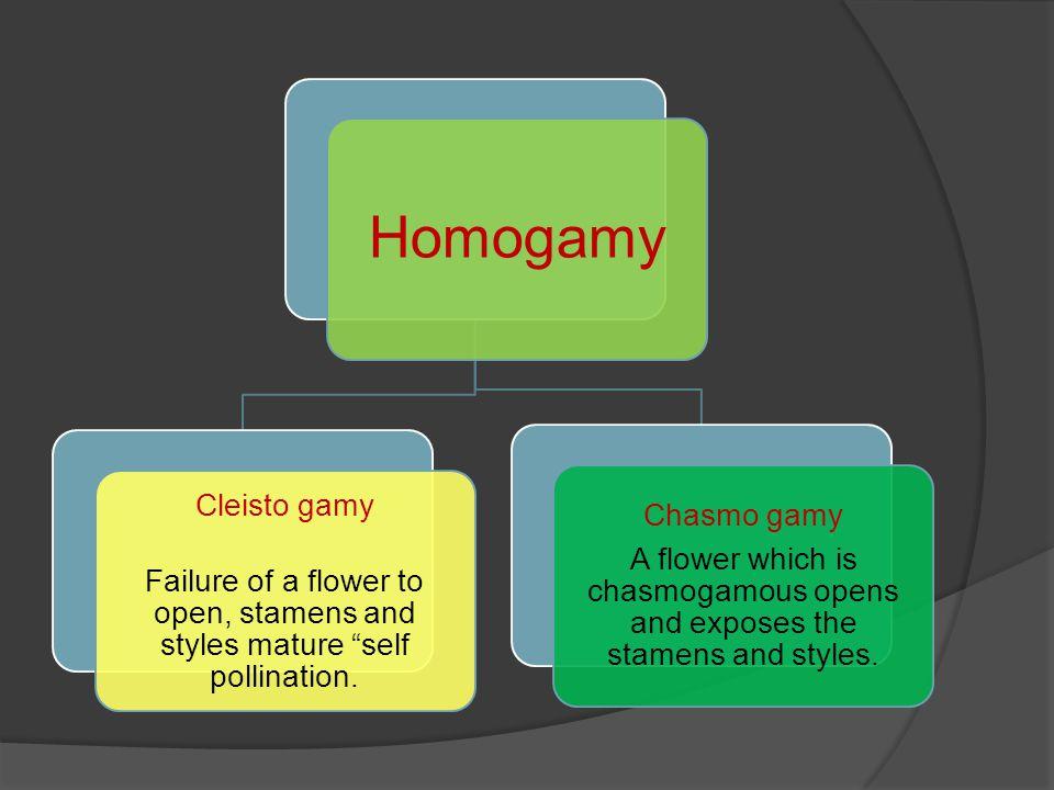 Homogamy Chasmo gamy Cleisto gamy