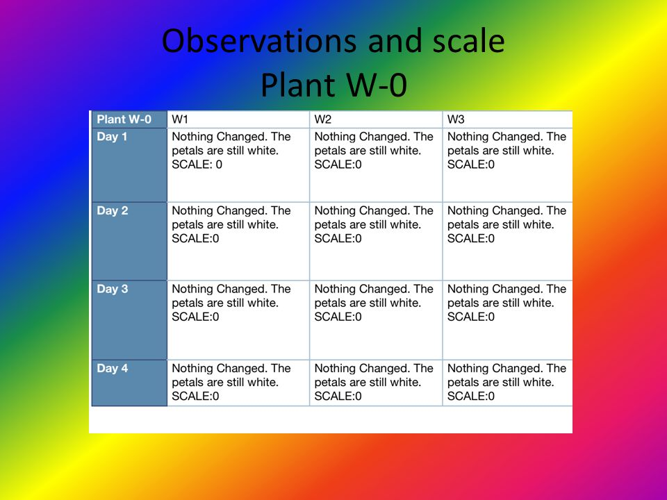 Observations and scale Plant W-0