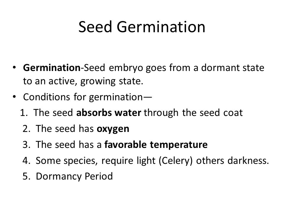 Seed Germination Germination-Seed embryo goes from a dormant state to an active, growing state. Conditions for germination—