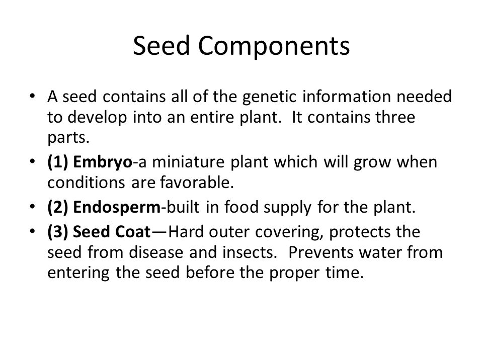 Seed Components A seed contains all of the genetic information needed to develop into an entire plant. It contains three parts.