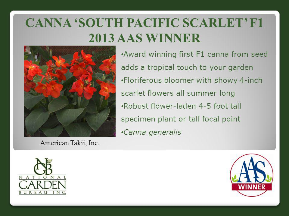 Canna 'south Pacific Scarlet' F1 2013 AAS Winner