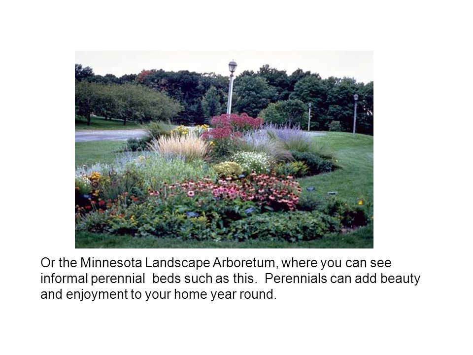 Or the Minnesota Landscape Arboretum, where you can see informal perennial beds such as this.
