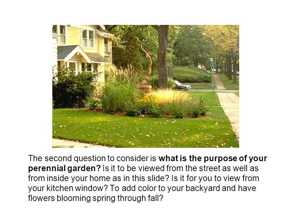 The second question to consider is what is the purpose of your perennial garden.