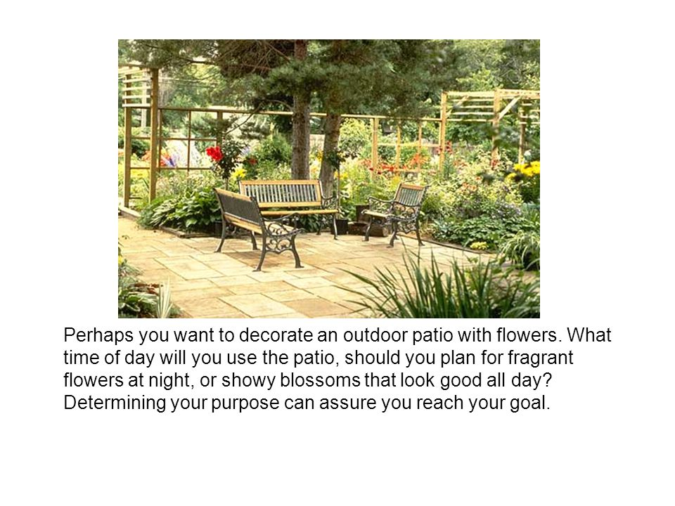 Perhaps you want to decorate an outdoor patio with flowers