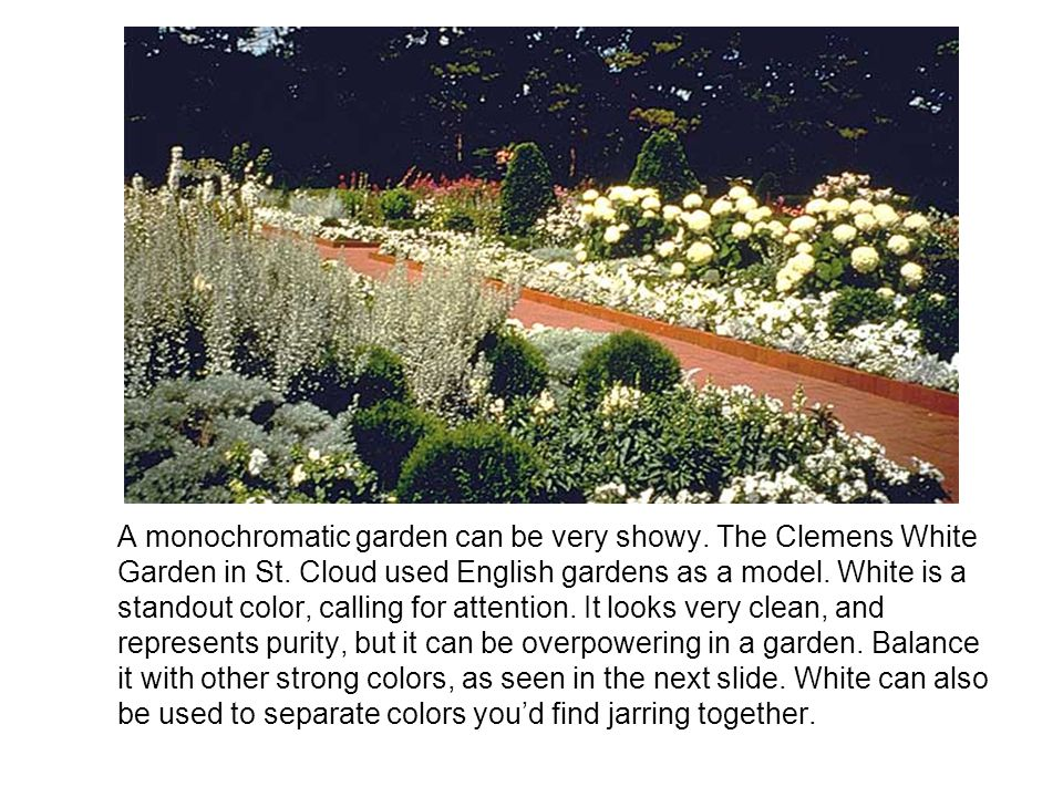 A monochromatic garden can be very showy