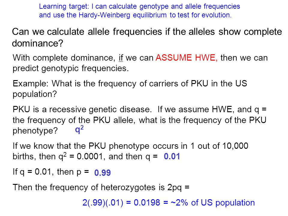 Learning target: I can calculate genotype and allele frequencies and use the Hardy-Weinberg equilibrium to test for evolution.