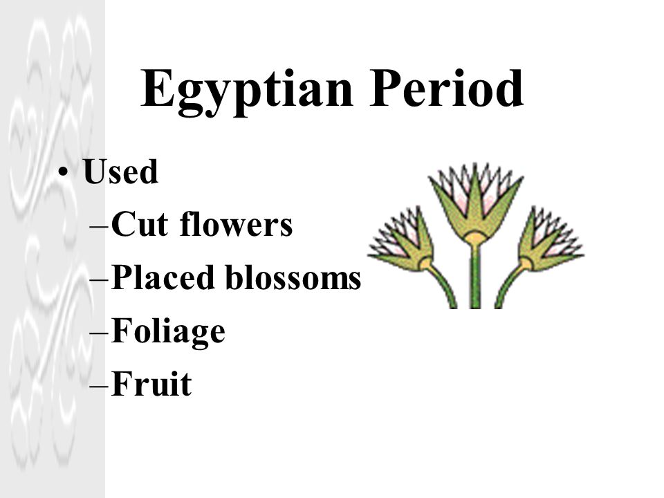 Egyptian Period Used Cut flowers Placed blossoms Foliage Fruit