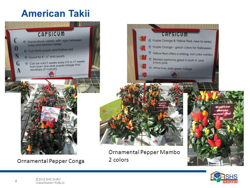 American Takii Ornamental Pepper Mambo 2 colors