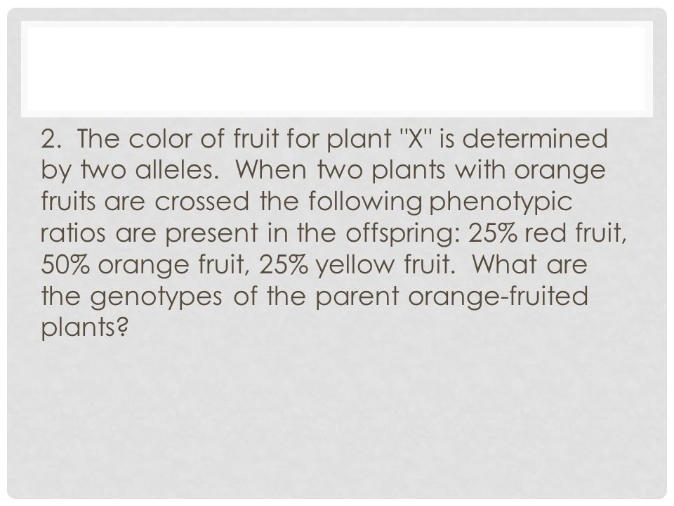 2. The color of fruit for plant X is determined by two alleles